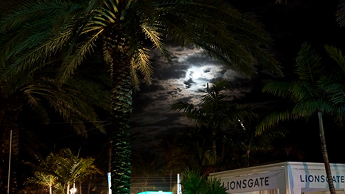 NATPE_2013_Moon_over_Miami_2